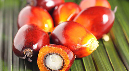 A close up of palm oil seeds