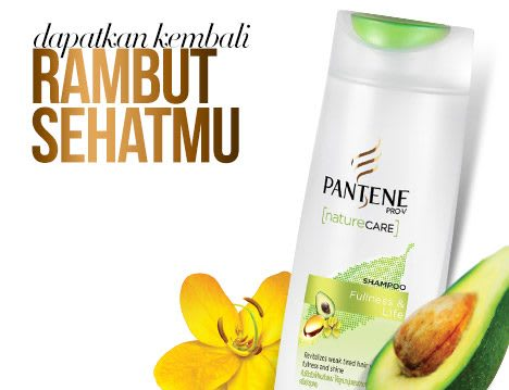 Pantene_Homepage_callout06