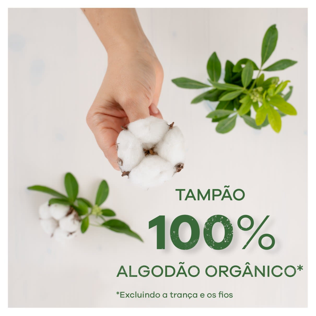Tampax Lily Cotton Protection 100 Algodâo Orgânico