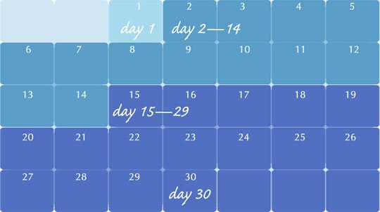 A calendar infographic showing the different days to note when adjusting to new dentures.