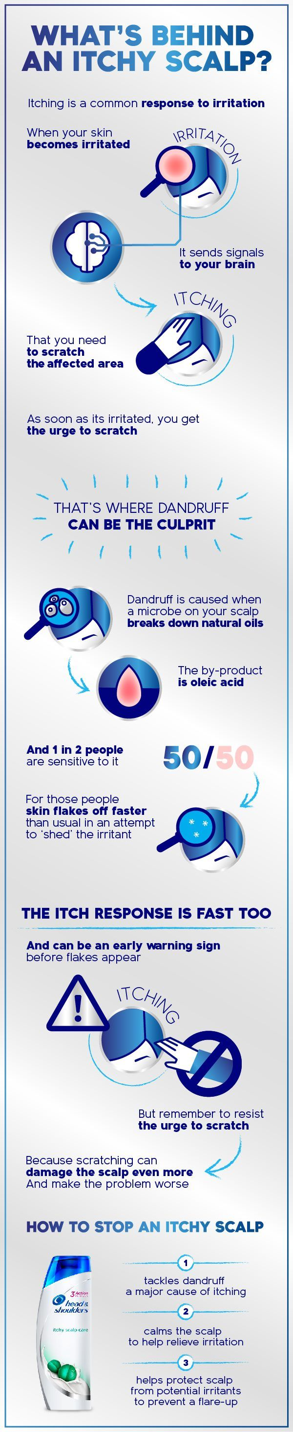 ItchyScalp infographic with product