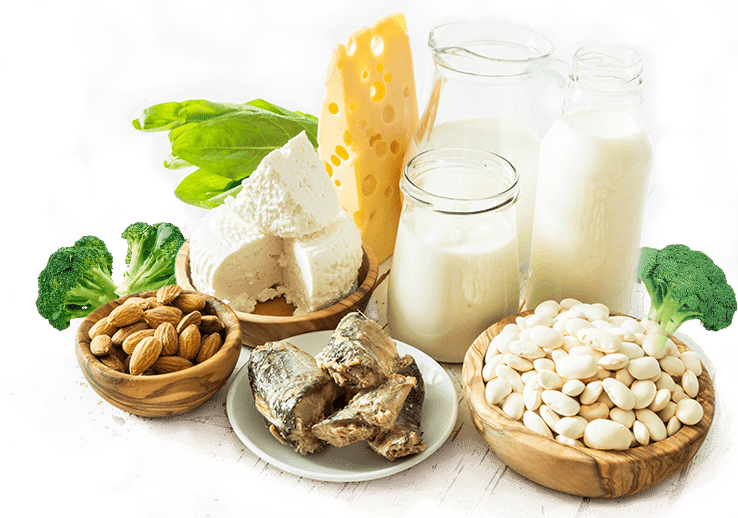 FUNCTION, FOOD SOURCES AND EFFECTS OF DEFICIENCY OF CALCIUM.