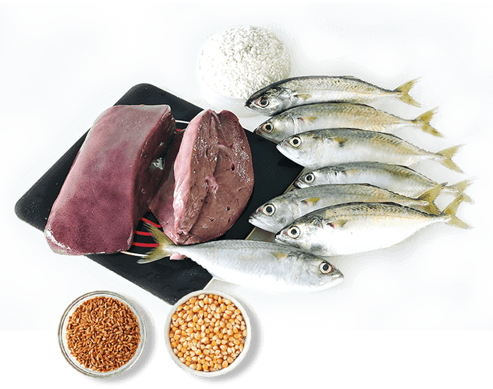 FUNCTION, FOOD SOURCES & DEFICIENCY OF SELENIUM