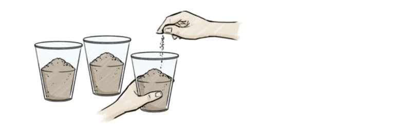 Place the soil into the plastic cups.