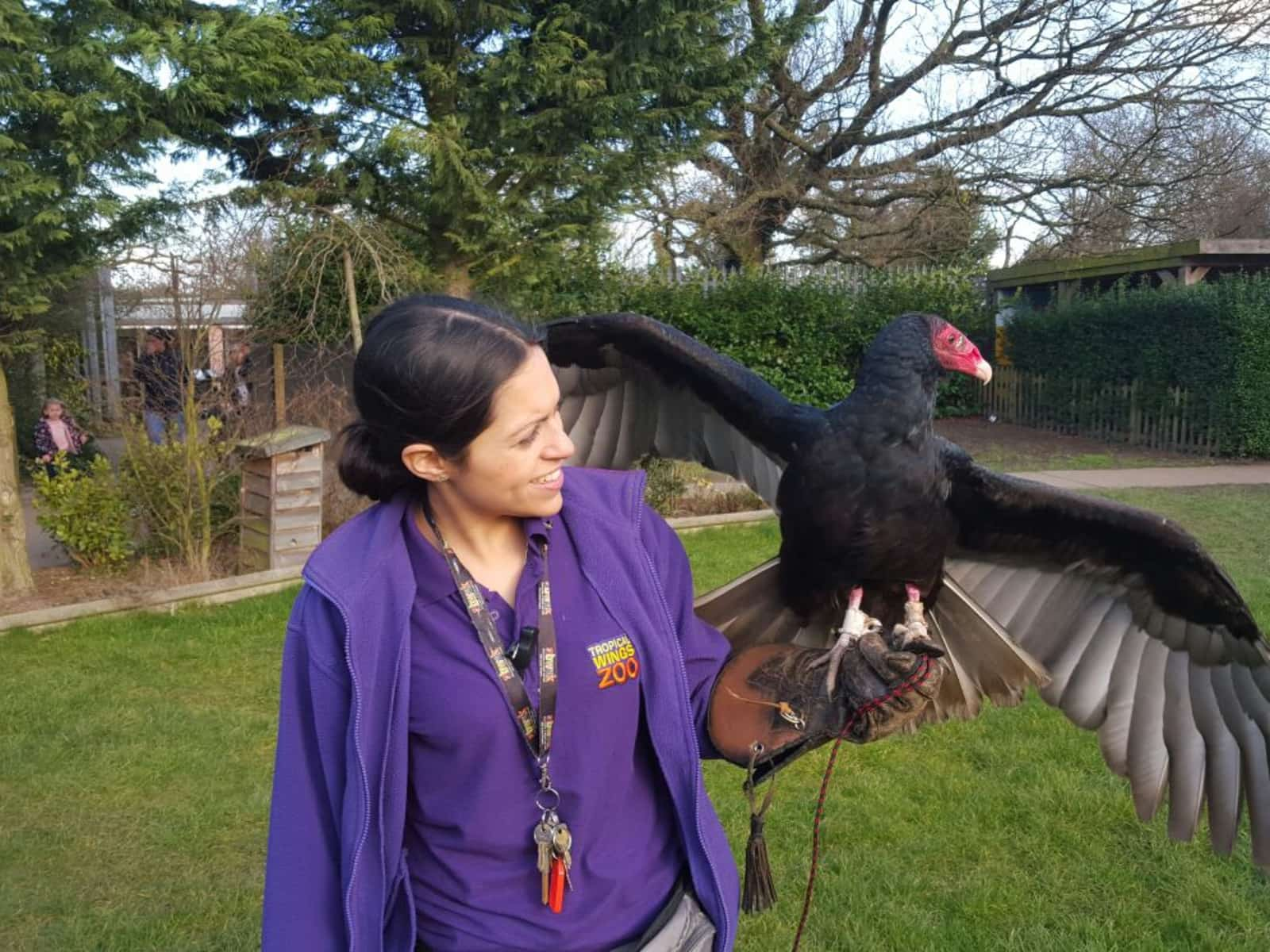 Puri and turkey vulture