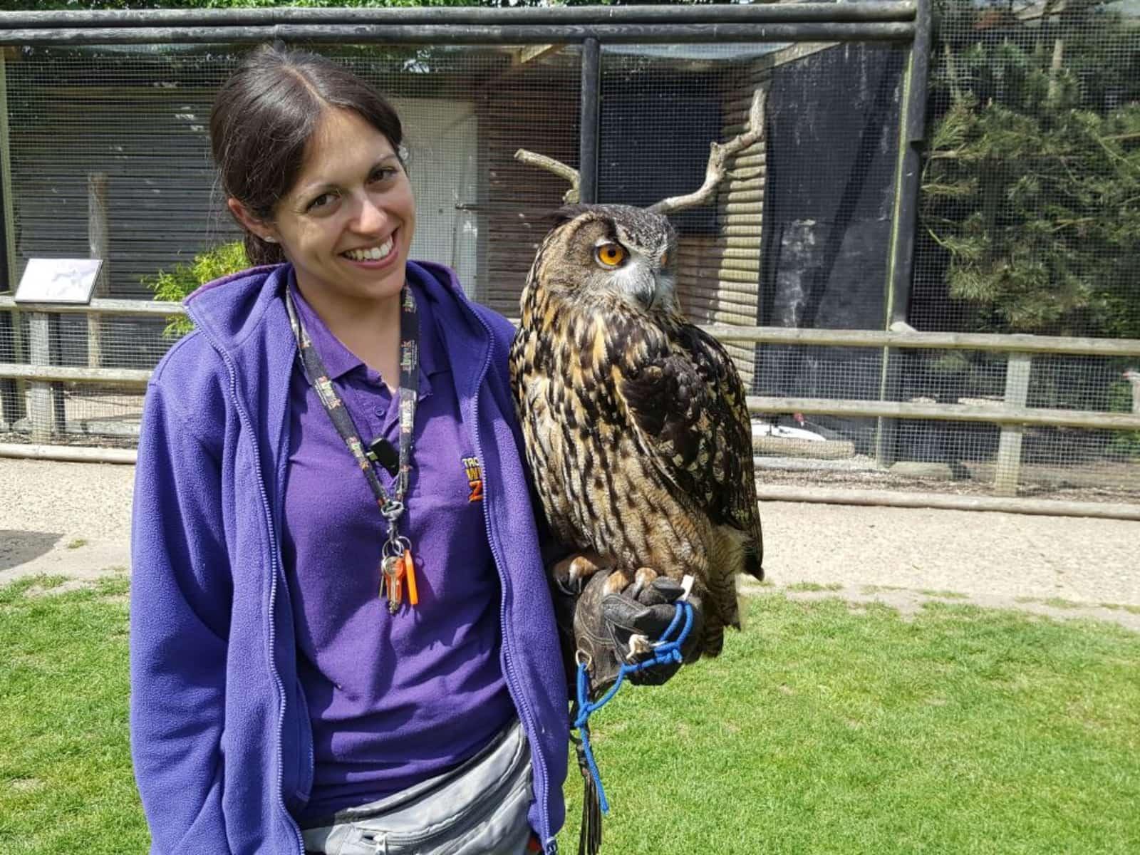 Puri and eagle owl