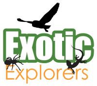 Exotic Explorers company logo