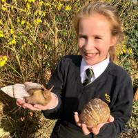 School child with 2 Giant Snails