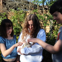 3 children at a party, with a girl in the middle holding our African Pigmy Hedgehog