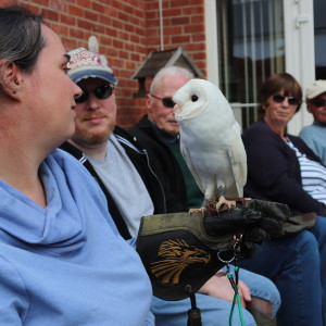 An adult party, with a woman in focus holding Bubo, our White Barn owl.