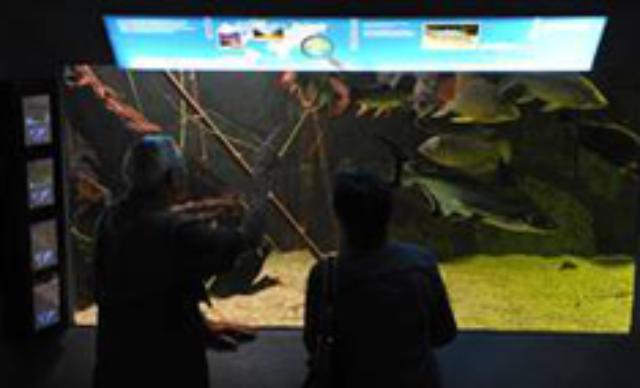 Tierpark Hellabrunn feiert Wiedereröffnung des Aquariums