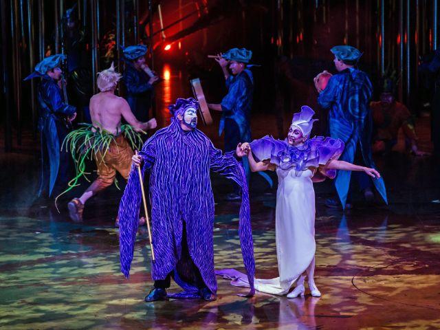 Die Aufführung Varekai des Cirque du Soleil