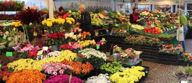 Blumenmeer im Pasinger Viktualienmarkt