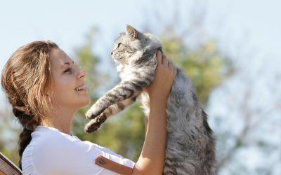 Frau hebt Katze hoch