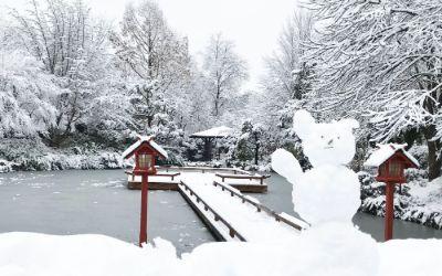 Westpark im Winter Japanischer Garten / muenchen.de
