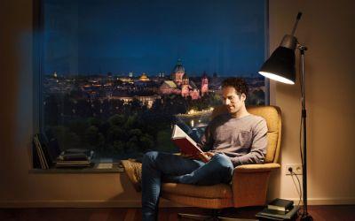 Mann liest im Sessel vor einer Fensterscheibe