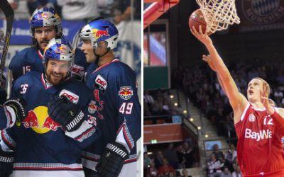 Collage aus EHC Red Bull und FCB Basketball
