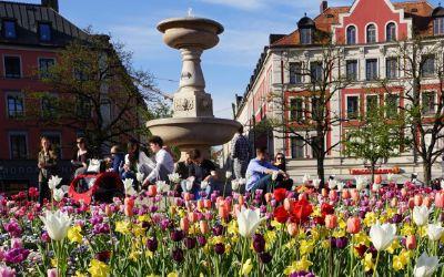 Gärtnerplatz im Frühling.