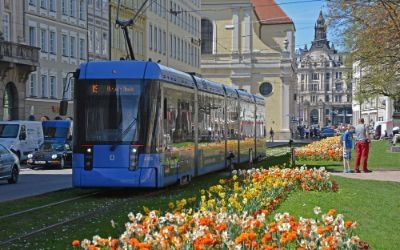 Tram 19 am Promenadeplatz im Frühling