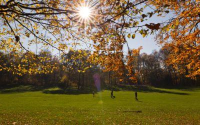 Bavariapark im Herbst