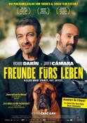 Freunde fürs Leben (OV) - Kinoplakat