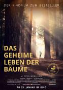 Das geheime Leben der Bäume - Kinoplakat