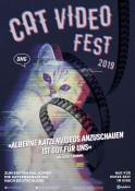 Cat Video Fest 2020 - Kinoplakat
