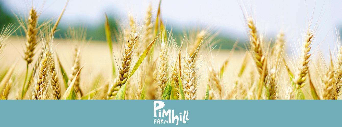 Pimhill Farm