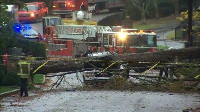 Un árbol de gran dimensión cayó sobre una camioneta en Buckhead lo que provocó la muerte del conductor. Branden Cam/Especial AJC.