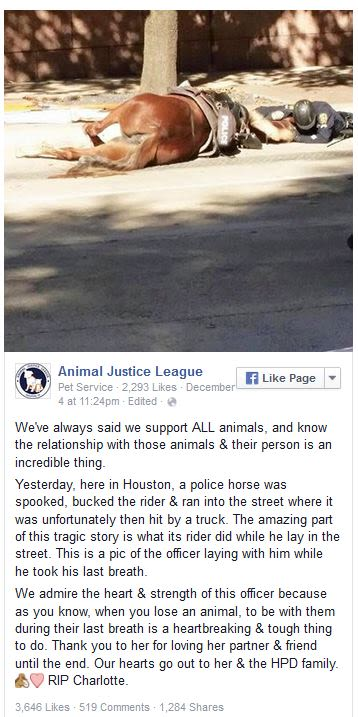 facebook animal justice league