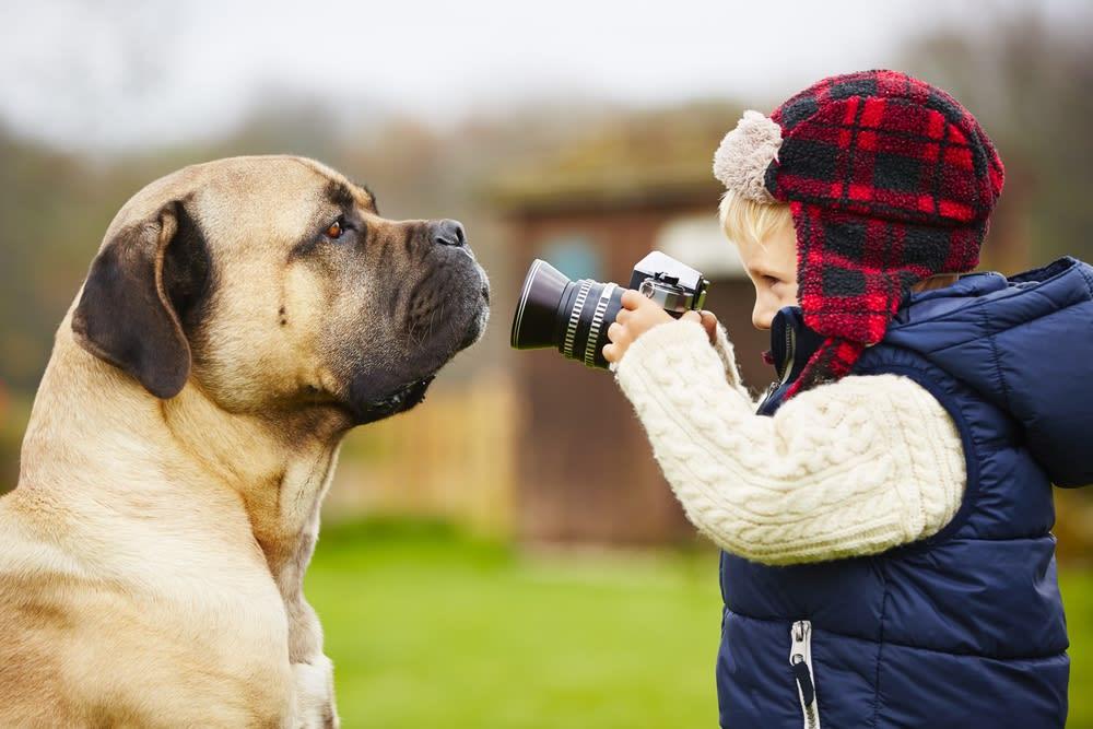 Día de la Foto de Mascotas Americanas: ¿ya tomaste la tuya? (3 FOTOS)