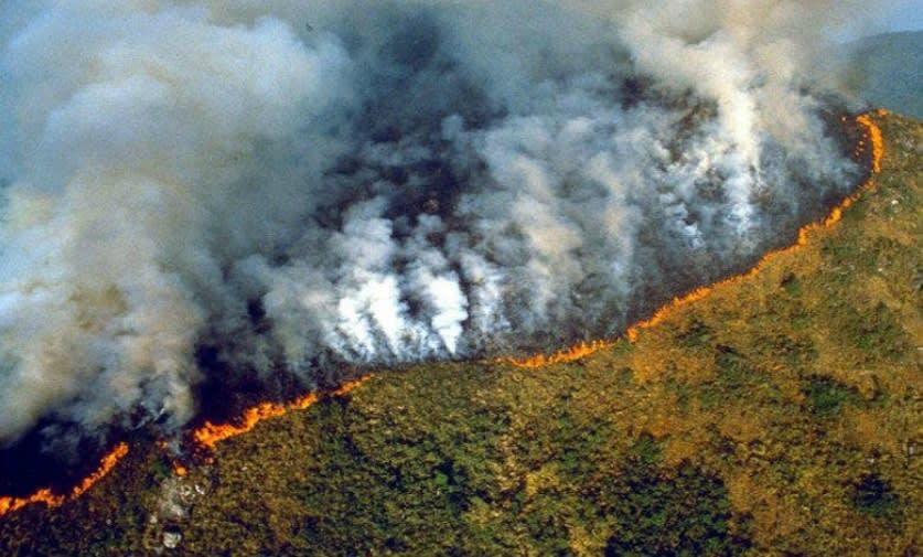 ¡Alerta! Selva del Amazonas ardiendo en llamas desde hace 16 días (2 FOTOS Y 1 VIDEO)