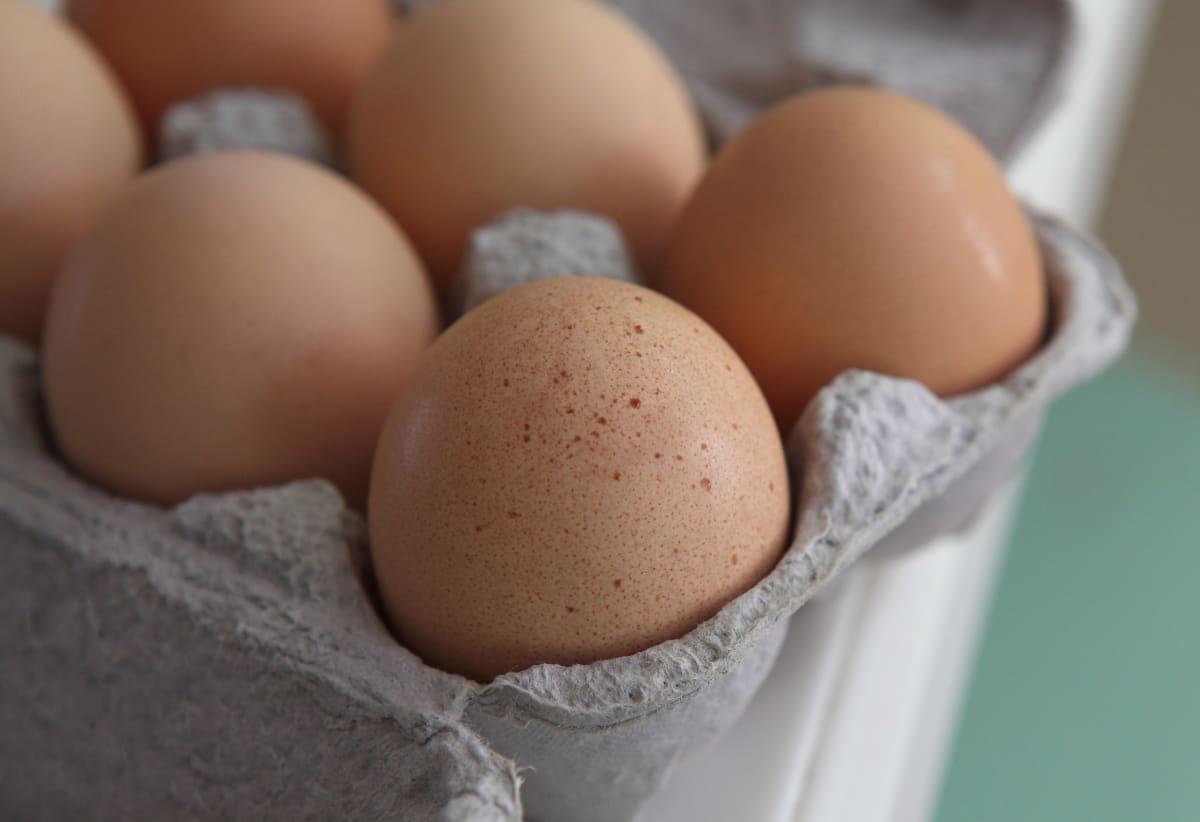 huevos con salmonelosis