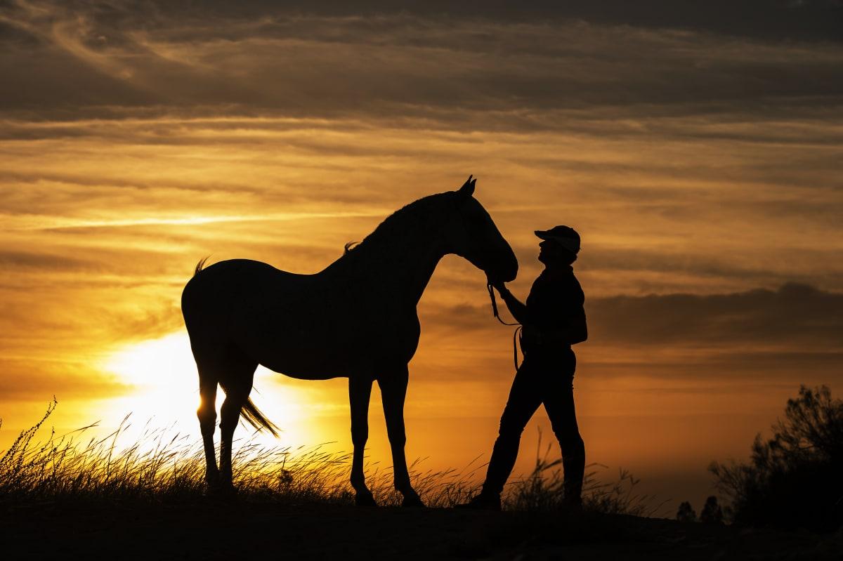 susurradores de caballos