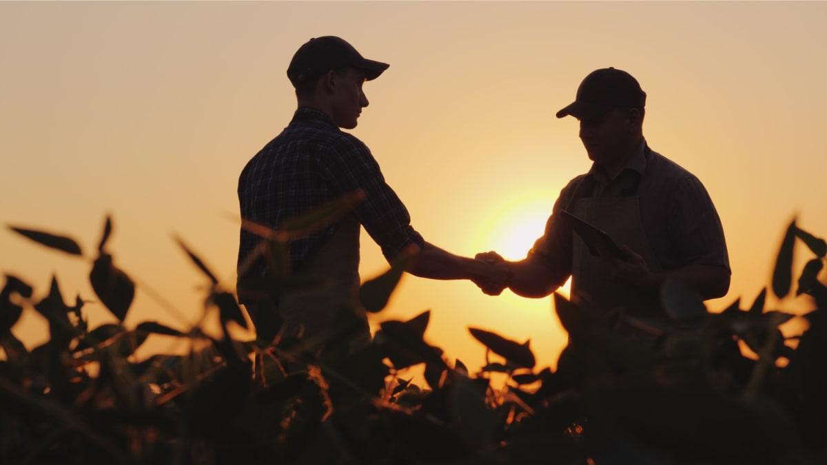 Trabajadores agrícolas EEUU