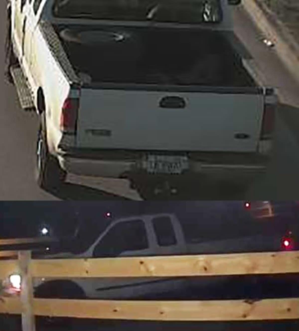 Florida: Crimen entre hispanos: Lo asesinan por el robo de un caballo en Lakeland