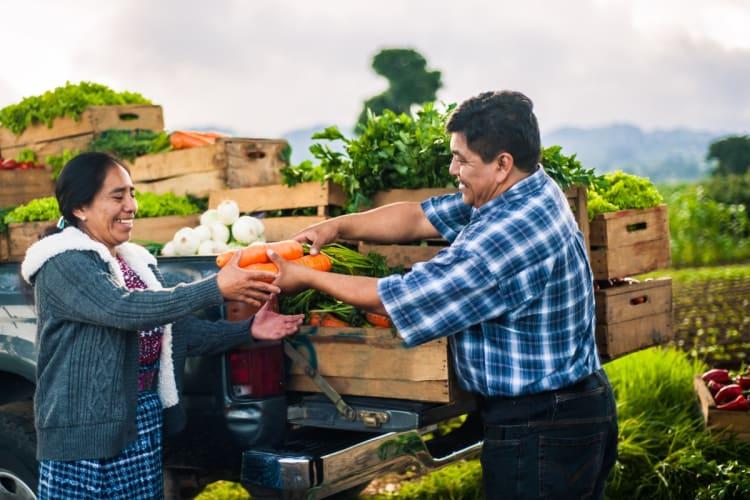 Ayuda económica para indocumentados: Hasta $1,000 por familia