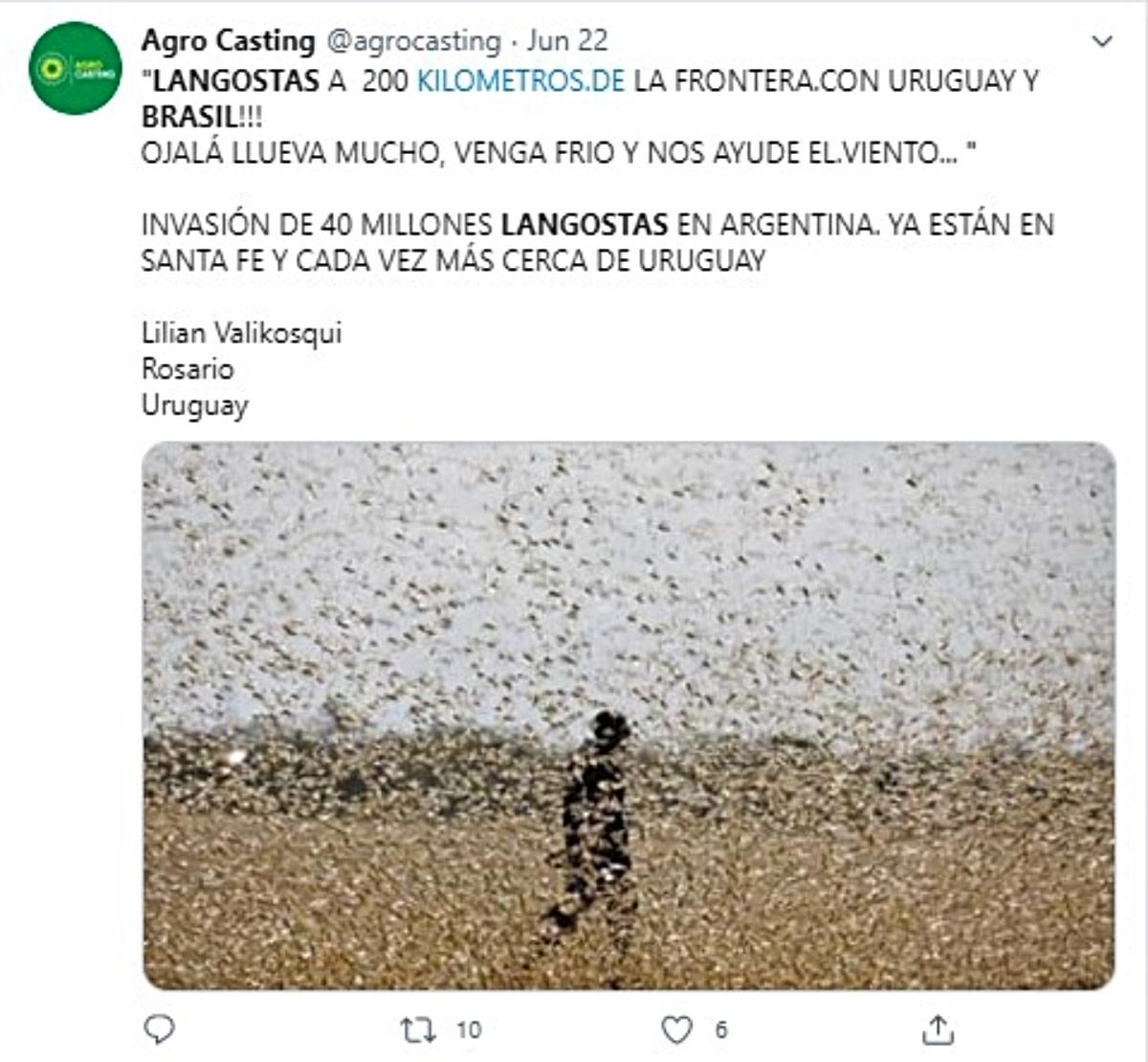 Curioso: Castigos del viento, nubes de arena y plaga de langostas