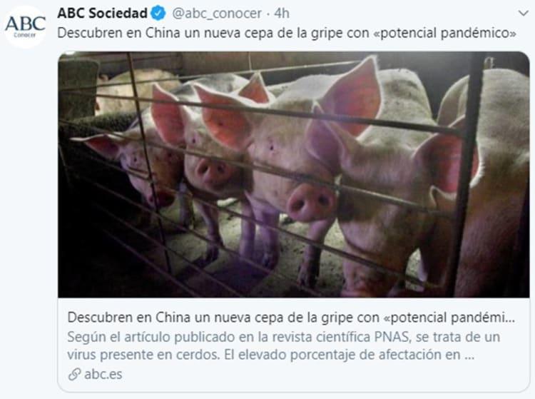 Pandemia cerdos China