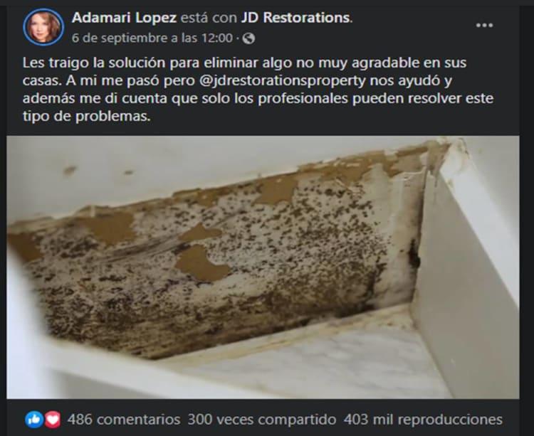 Adamari López mold