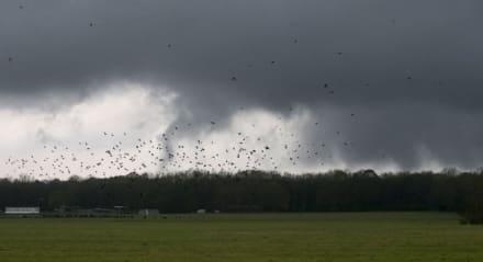 Tornados azotan cinco estados mientras continúan tormentas severas en el sureste