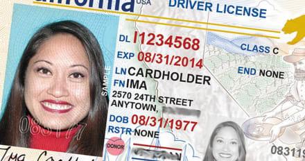 Nevada: Hispanos con TPS no pueden renovar licencias de conducir