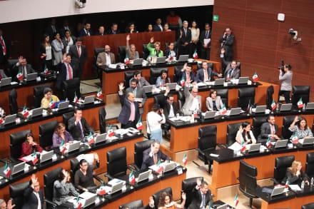 Senado de México cumple promesa de López Obrador y anuncia acuerdo de austeridad (VIDEO)