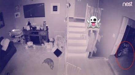 Fantasma de un niño captado por cámara de seguridad en Estados Unidos