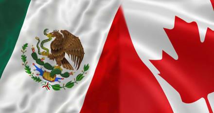 Copa Oro 2019 México – Canadá: A qué hora y dónde ver el partido
