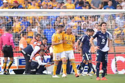 Los Tigres finalistas del fútbol mexicano