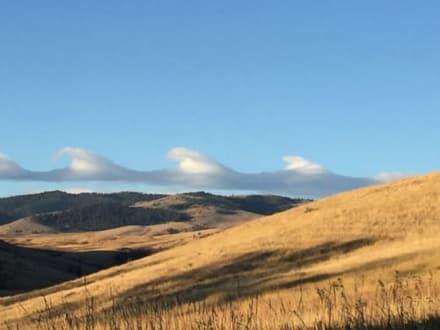 Extraña formación de nubes en forma de olas sorprende a Virginia