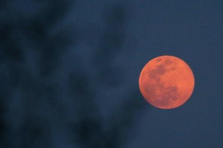 Alertan sobre un fenómeno en el cielo conocido como la 'Luna de Fresa' (FOTOS)