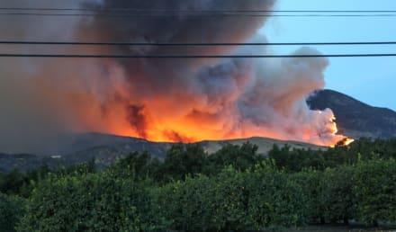 Incendios forestales obligan a evacuar a miles de personas al oeste de EE.UU.