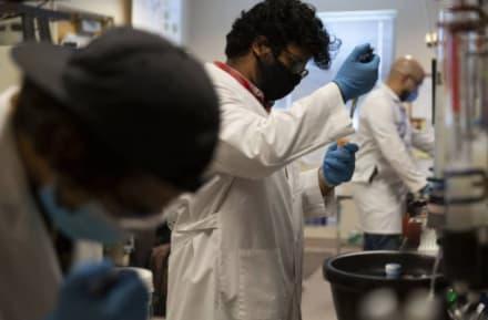 Estudio demuestra que pacientes con coronavirus presentan infecciones intestinales prolongadas